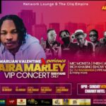 Cameroon Artist Show Lack Of Confidence As NairaMarley Takes Front Position Of Their Concert Ticket
